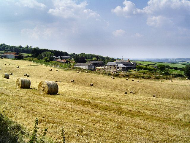 Trenchard Farm