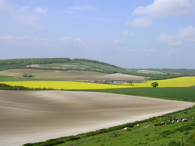 Farmed chalk downland north of Teglease Down