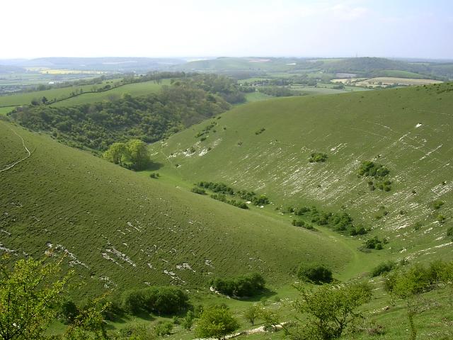 Ramsdean Down and Rake Bottom, Butser Hill