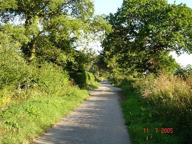 Plas yn Cwm Lane