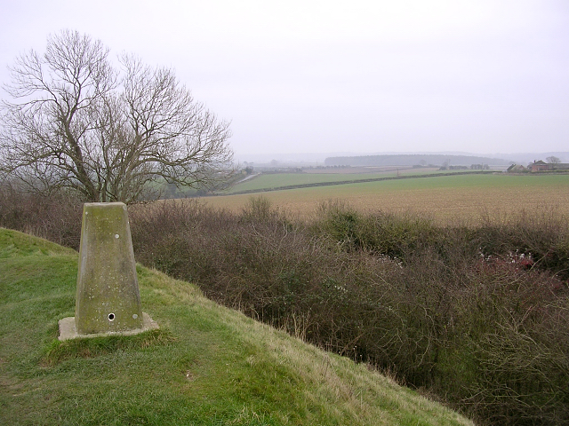 Trig point on the rampart of Spettisbury Rings