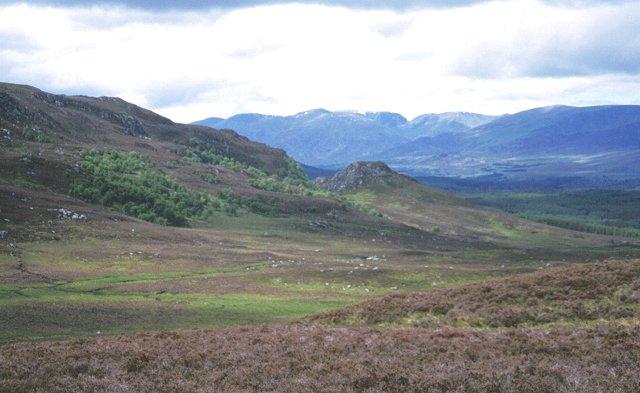 Moorland above Laggan