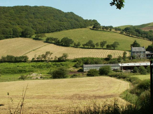 Fields near Glanyrafon