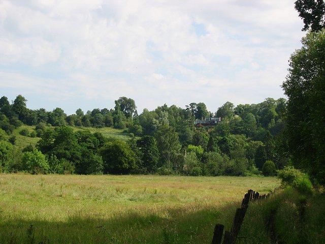 Old parkland, Polton.