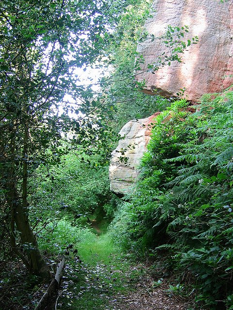 Crags, Roslin Glen