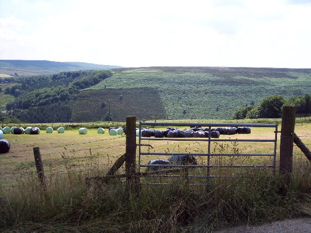 Hay-making, Hill Top Farm