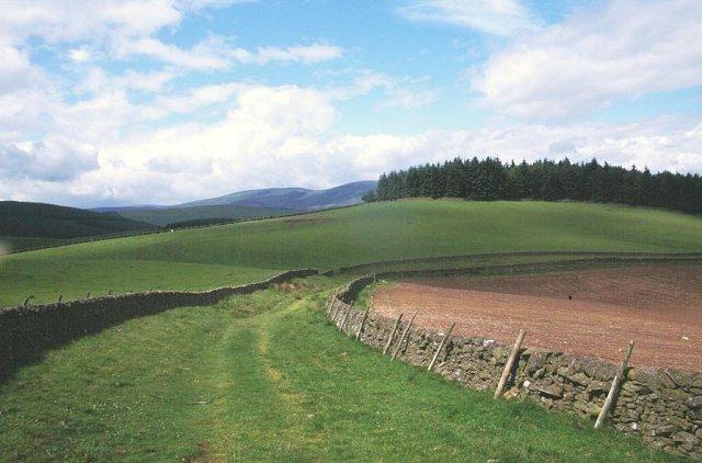 Minchmoor Track