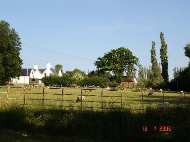 Trefnant fields