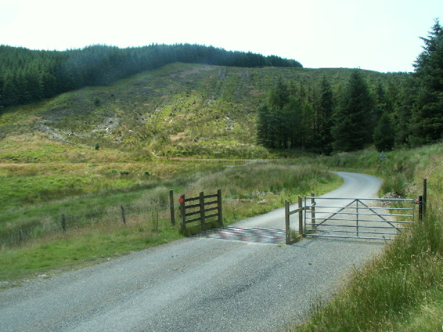 Cattle Grid, Nant-y-Moch
