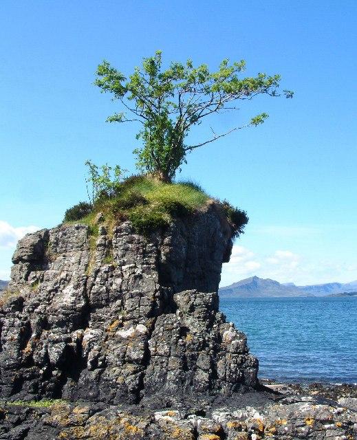 Rubh an Uillt Dharaich, Skye