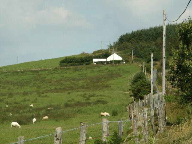 Pasture, Llwyn Prysg