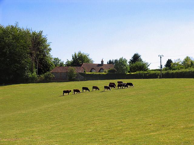 Near Path Hill Farm