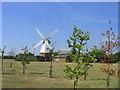 TQ6381 : Orsett Windmill, Bakers Lane, Orsett, Essex by John Winfield