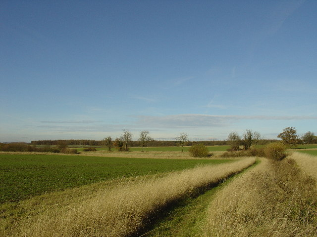 View of fields on the edge of Meesden