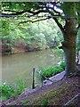 TQ2029 : Roosthole Pond, Mannings Heath, Near Horsham, West Sussex by Pete Chapman