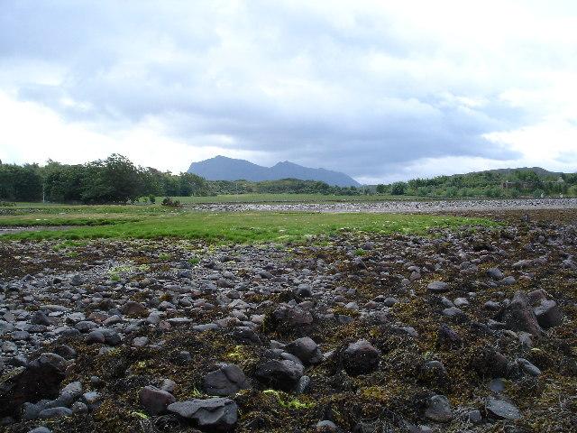 Salt Marsh Inverewe