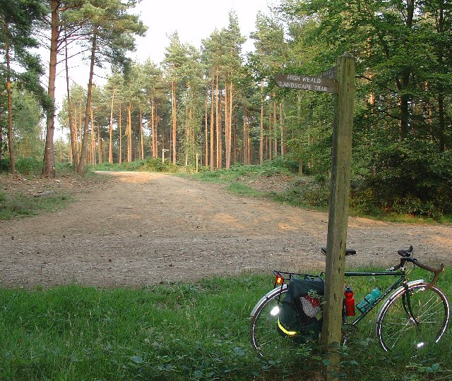 Track Junction in St Leonard Forest. Part of the High Weald Landscape Trail