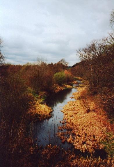 Barnsley Canal.