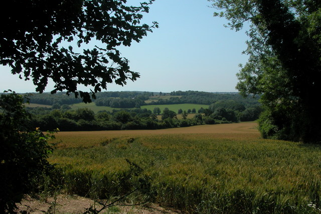 View over fields to Meon Valley railway (disused)