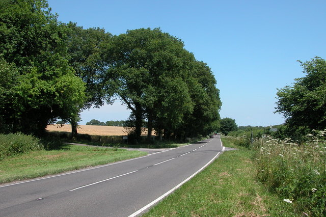 Looking North along the A32 passing through farmland.