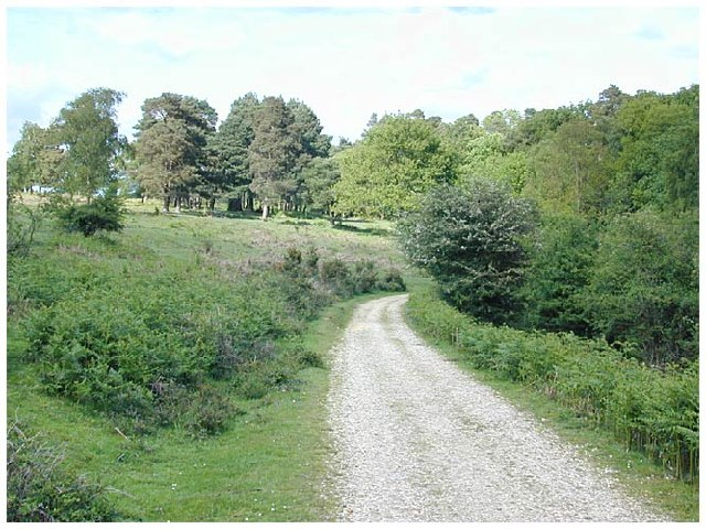 Towards Great Linford Inclosure