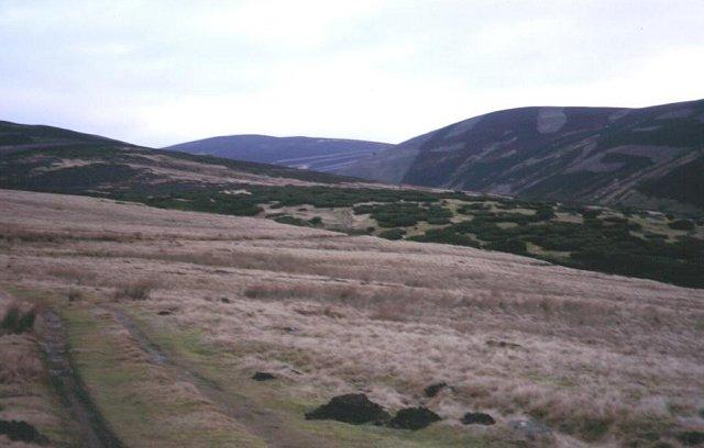 Moorland, Glenfenzie