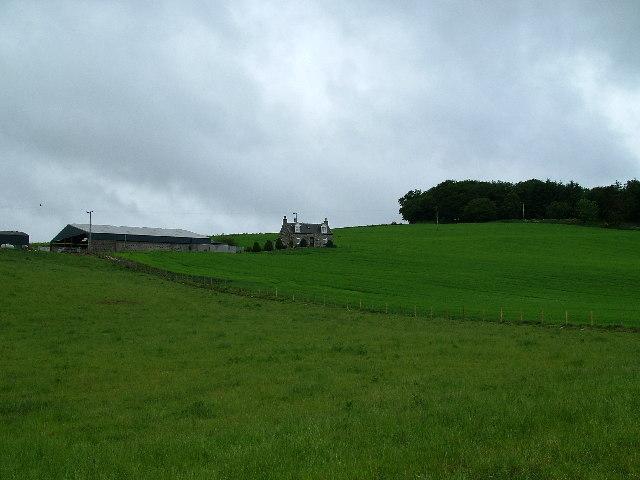 Berrybrae Farm