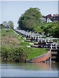 ST9761 : Caen Hill locks by Roy Gray
