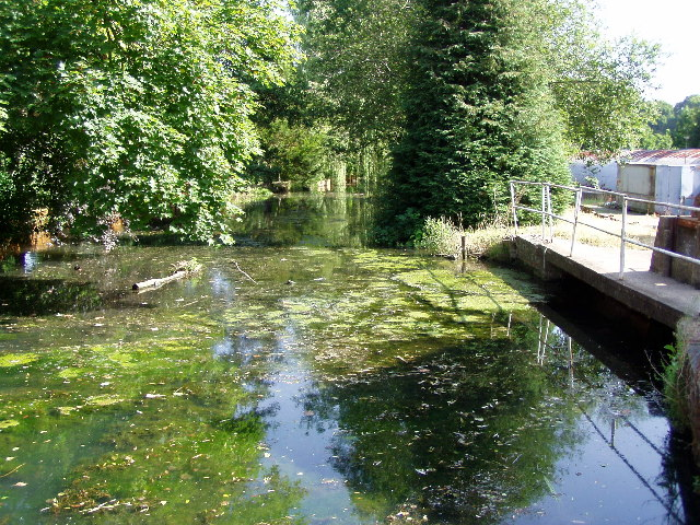 Botley Mill River Hamble