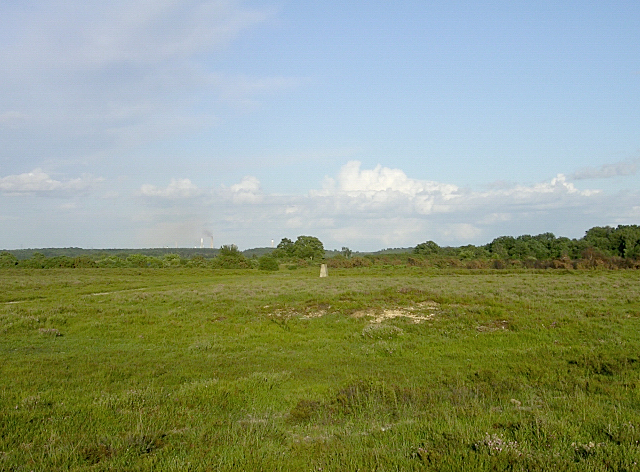 Trig point and tumulus on Yew Tree Heath, New Forest