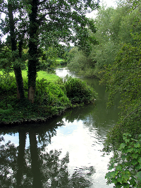 Reflections on the Kennet River: Woolhampton