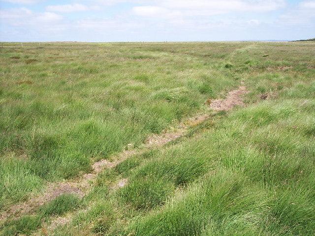 Oxenhope Moor