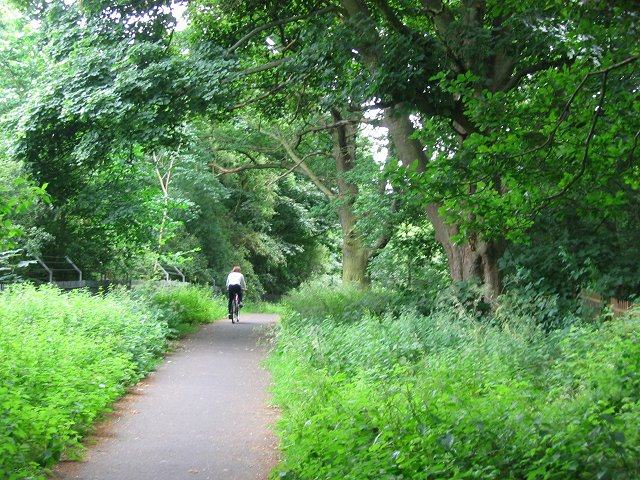 Cycle path, Barnton.