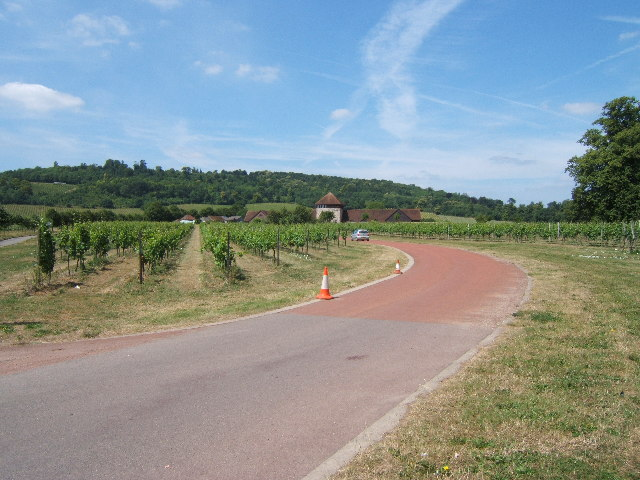 Denbies Wine Estate, Dorking