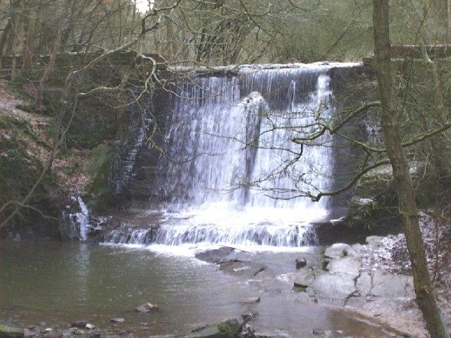 Weir - Wepre Park