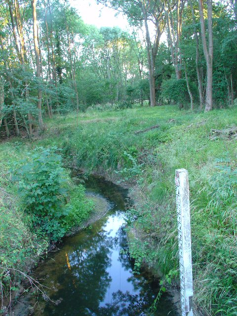 River Mole at Granthams Bridge (Rusper - Ifield Road), Near Ifield, Crawley, West Sussex