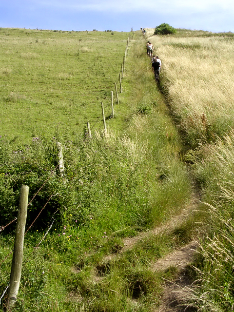 Steep incline on the South West Coast Path towards St Aldhelm's Head, Isle of Purbeck