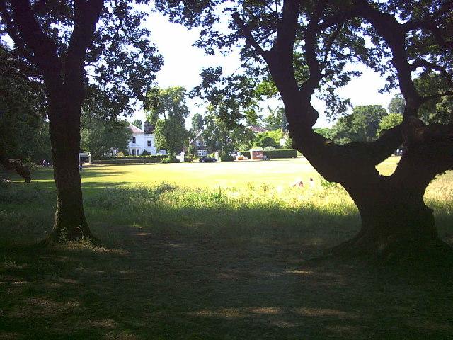 Part of Barnes Common.