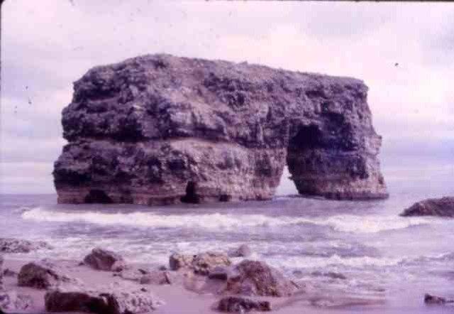 Marsden Rock Bird Sanctuary