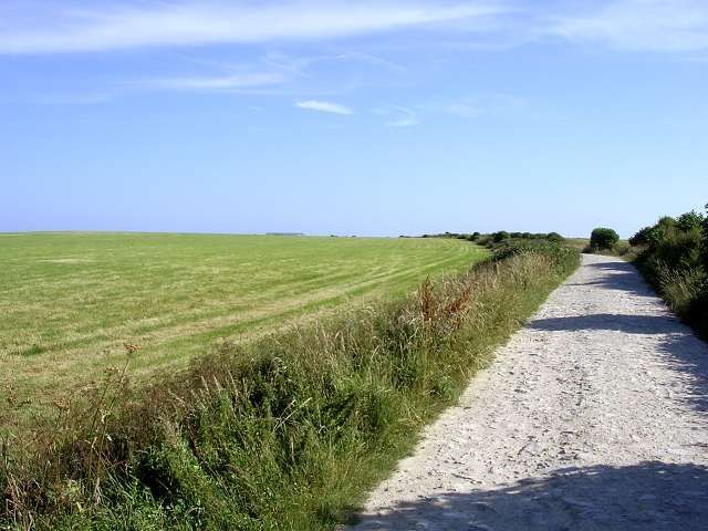 Field and track to St Aldhelm's Head from Renscombe Farm, Isle of Purbeck