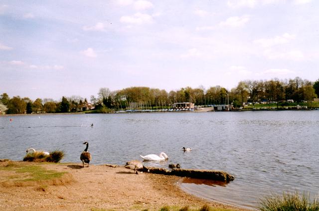 Powell's Pool, Sutton Park, Sutton Coldfield