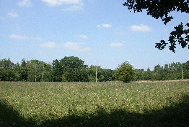 Field near Ifold