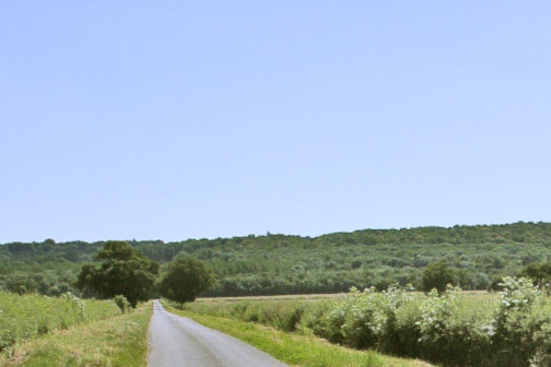 Wood Lane and Barkestone Wood