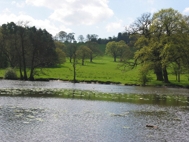 The fish ponds at Harewood House
