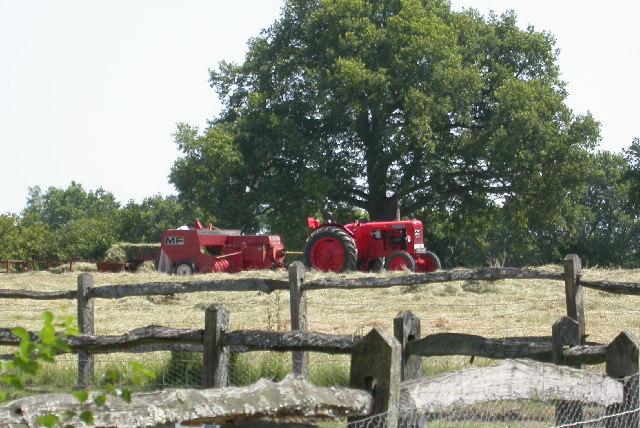 Trenchmore Farm