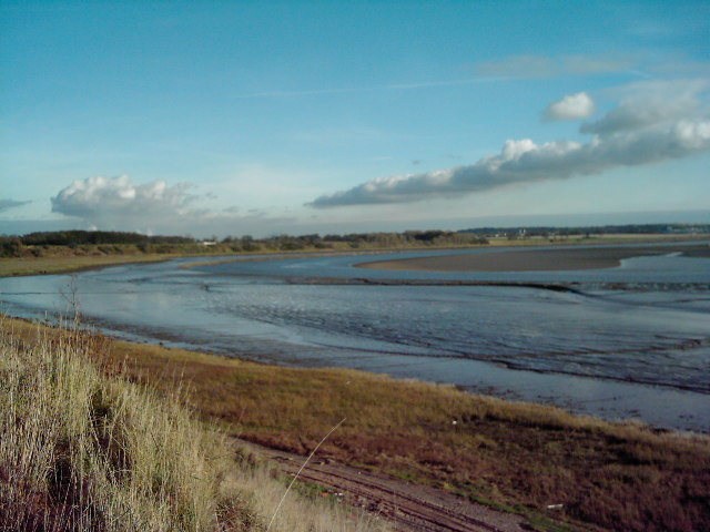 River Mersey,Dungeon Bank