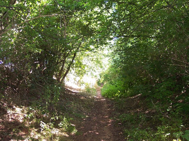 Poets Path holloway from Ryton to Redmarley