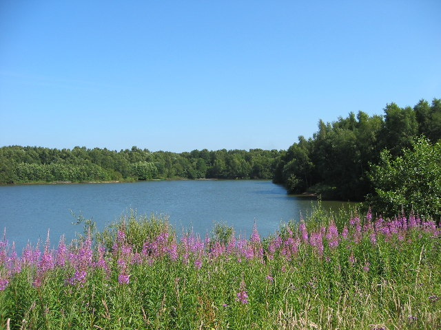 Brereton Heath Nature Reserve