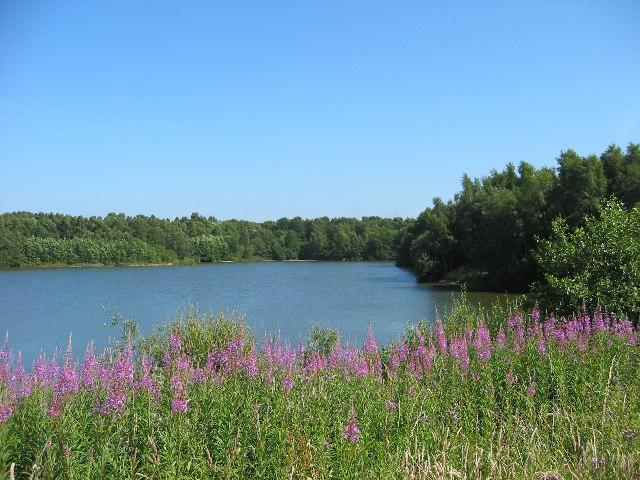 Brereton Heath Nature Reserve