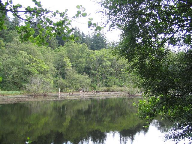 Low Dam near the River Washburn